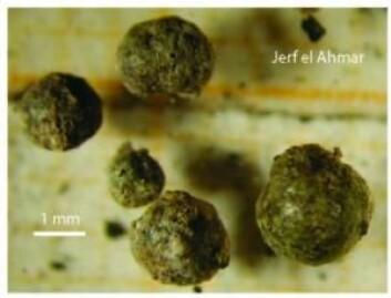 Scoria-fragmentene fra Syria som forskerne har datert og analysert.  (Foto: Don Davis)