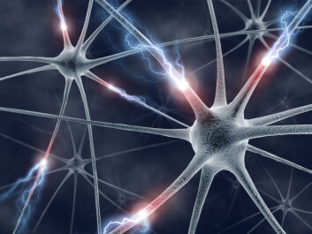 Kommunikasjonen mellom nerveceller er særlig forstyrret ved schizofreni.  (Foto: Colourbox)