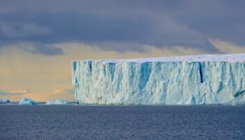 Isfronten fra Austfonna ut mot havet, hvor breen kalver i sjøen. (Foto: Steinar Myhr/Samfoto)