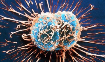 Kreft: Et spørsmål om flaks eller uflaks?