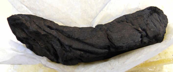 Den forkullede rullen som ble undersøkt. Rullen er 16 cm. lang. (Foto: D. Delattre © Bibliothèque de l'Institut de France)