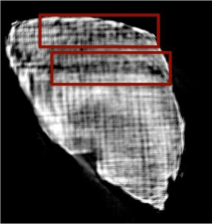 Forskerne tok også bilde av et papyrus-fragment fra en rull som allerede hadde blitt åpnet, for å se om de kunne få bilder av bokstavene. (Foto: Mocella et al. Nature Communications)