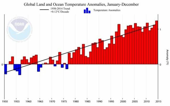 Global temperatur fra NOAA for perioden 1950 - 2014. Trenden gjennom disse 65 årene er  0,12 grader C pr tiår. (Bilde: NOAA)
