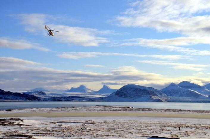 En del av logistikken består av Airlifts helikopter som frakter forskerne inn og ut fra Ny-Ålesund.  (Foto: Helge M. Markusson, Framsenteret)