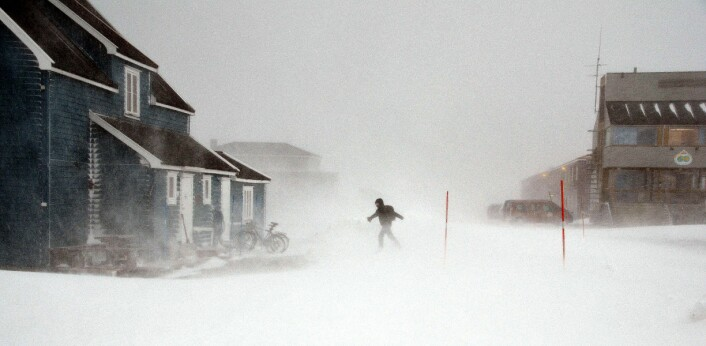 Ny-Ålesund regnes som verdens nordligste bosetting. På nesten 79 grader nord byr det på utfordringer både for de som bor der og de som driver infrastrukturen – Kings Bay AS.  (Foto: Helge M. Markusson, Framsenteret)