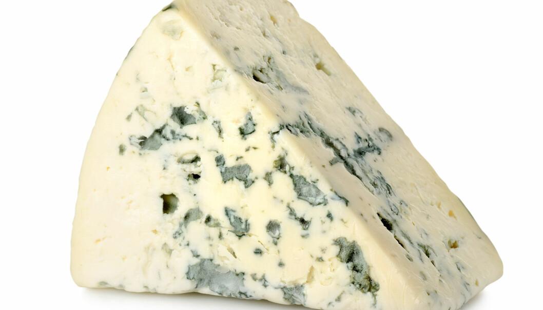 Fermenterte eller gjærede oster som Roquefort og Gammelost er rike på vitamin K2. Vitaminet viser seg å ha positiv effekt på tilførsel av kalsium til skjelettet.  (Foto: Microstock)
