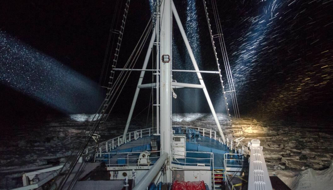 Forskningsskipet RV Lance skal fryses inn i drivisen og følge isen fra den fryser til nå i januar til den smelter utover sommeren. (Foto: Jago Wallenschus / Norsk Polarinstitutt)