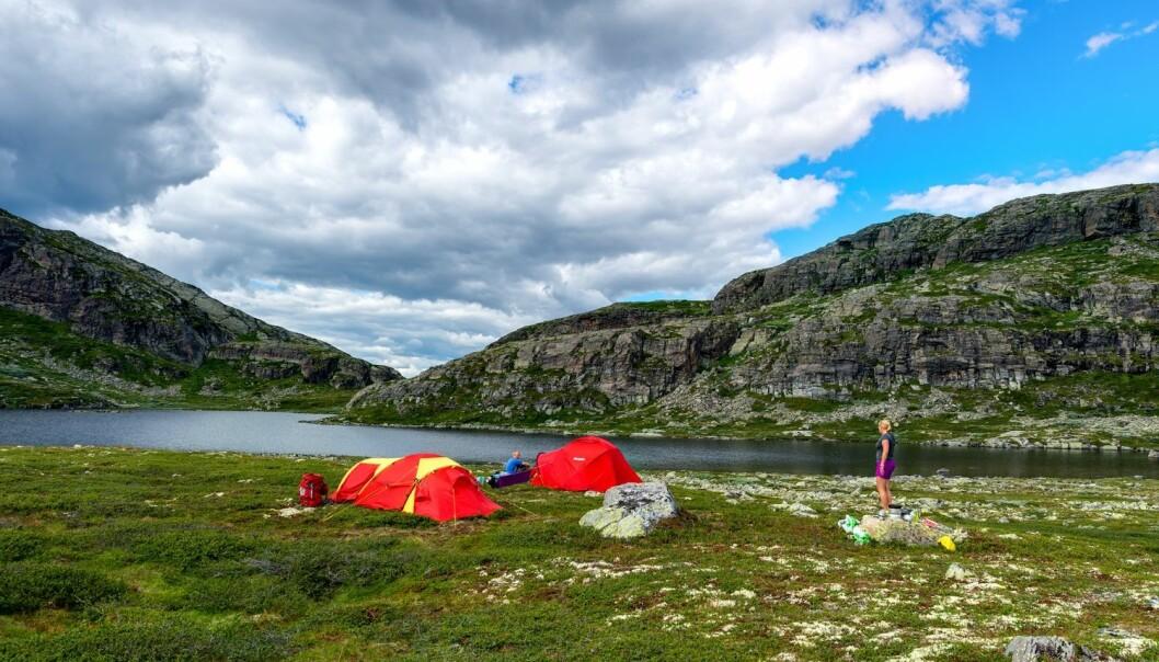 Forskeren mener Hemsedal har klart det, nemlig å kombinere turisme og tradisjonelt landbruk.  (Foto: Jiri Castka/CTK)