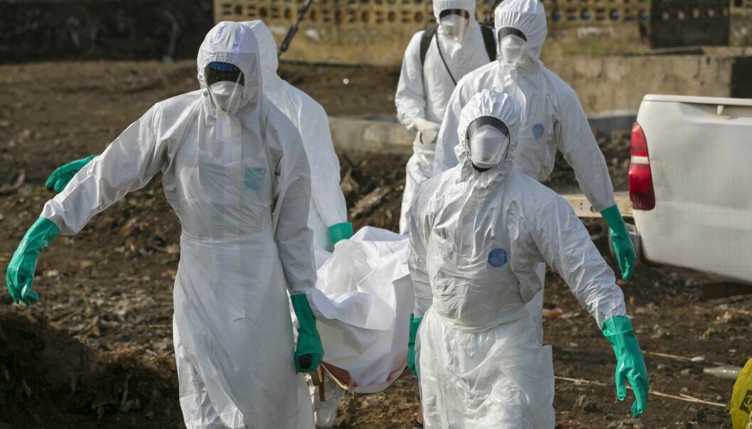 Helsearbeidere bærer en båre med liket av en person som antas å ha dødd av ebola i Freetown i Sierra Ebola den 21. desember i fjor. (Foto: Baz Ratner, Reuters, NTB scanpix)