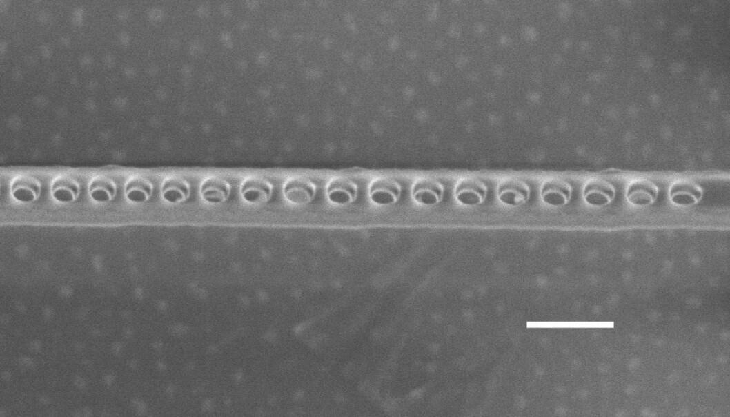 Elektronmikroskopet viser hullene i det tynne diamantlaget som forsterker lys fra elektroner. Disse elektronene lagrer kvantedata med en ny teknologi som er utviklet ved Harvard University, University of California og University of Chicago. Den vannrette hvite linja angir en lengde på 200 nanometer, eller 200 milliondels millimeter. (Bilde: Evelyn Hu/Harvard)