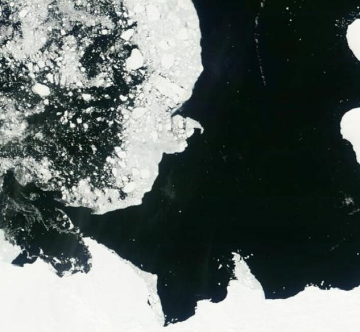 Midtsommer ved kysten av Antarktis: Her en lett blanding av sjøis og åpent vann i Bellingshausen-havet. (Bilde: NASA Terra MODIS)