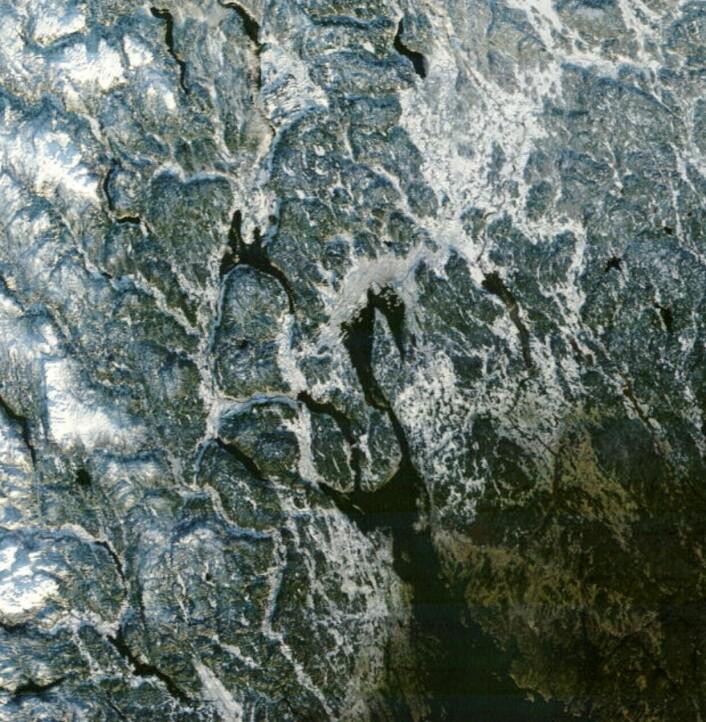 Satellittbilde tatt 25. desember 2014 fra NASAs satellitt Terra. Akershus er snødekket, mens det er barfrost i store deler av Østfold. (Bilde: NASA Terra MODIS)