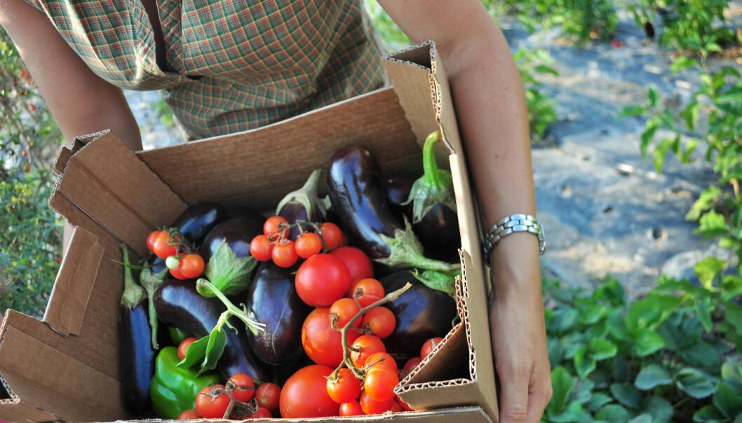 Et vegetarisk kosthold er det mest klimavennlige, og er dessuten forbundet med en bedre helse, viser ny forskning.  (Foto: Microstock)