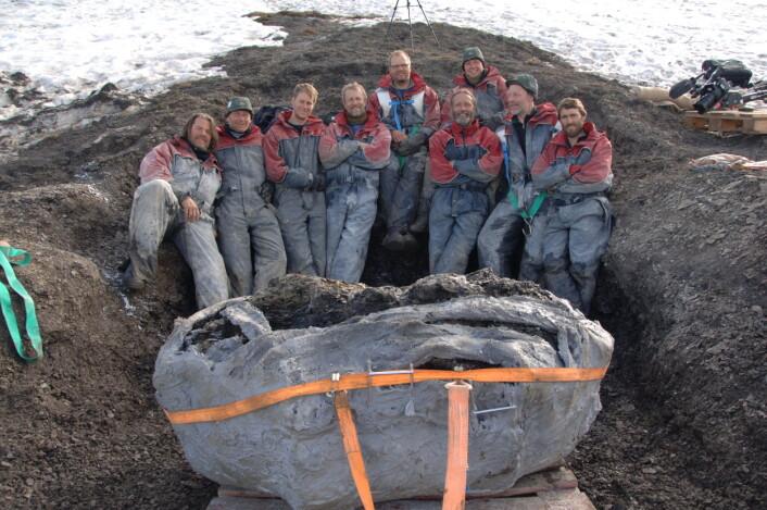 40 tonn ble gravd ut for hånd i hvert steinbrudd. Både studenter og frivillige hjalp til under jakten på monstrene fra dinosaurtiden.  (Foto: Jørn Hurum/NHM/UiO)