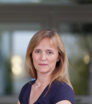 Kjersti K. Tørnkvist, avdelingsdirektør for Avdeling for måle- og instrumentteknologi ved Norsk institutt for luftforskning. (Foto: Inger Næss)