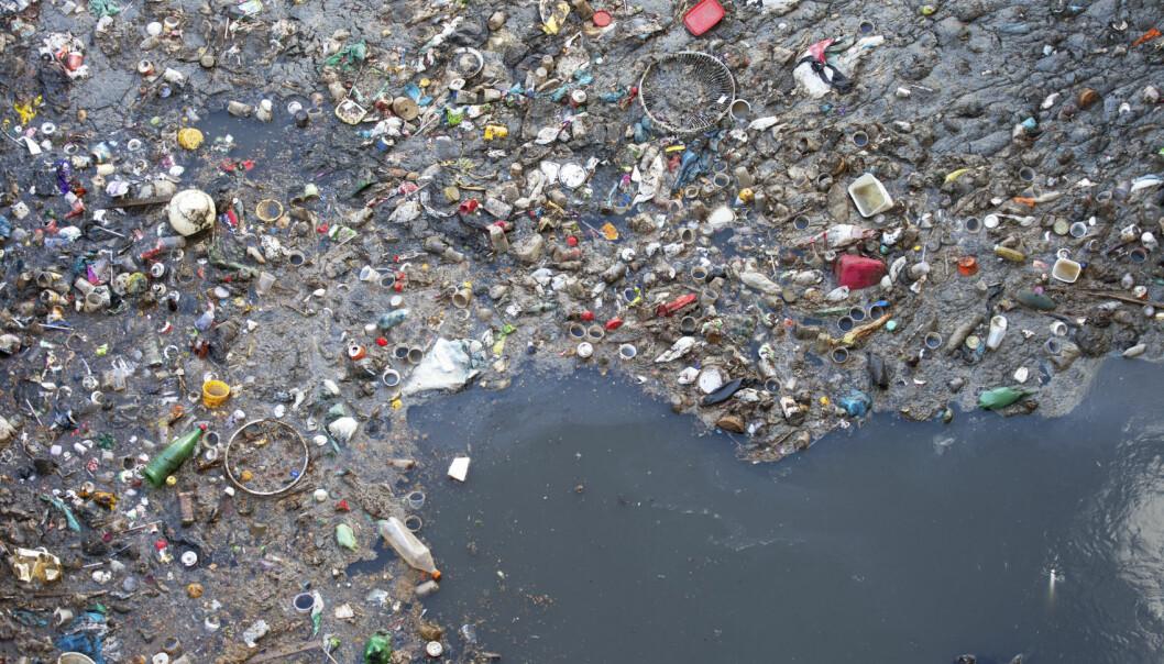 Enkelte steder samler søppelet seg i store øyer på havoverflaten. (Foto: iStock)