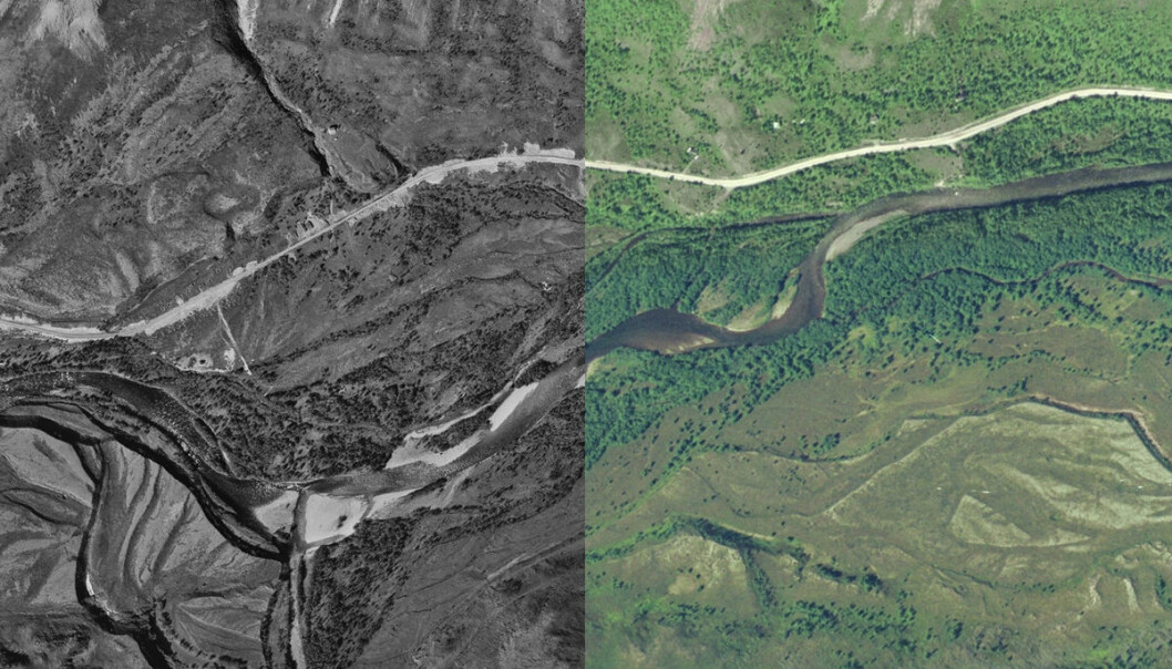 Syltefjorddalen på Varangerhalvøya, til venstre i 1969 og til høyre i 2005. Lengre ned i artikkelen er en animasjon for vekselvis sammenligning av de to bildene. (Foto: Kartverket)