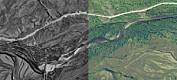 Fotoskatt fra arktisk grenseland viser at det gror igjen