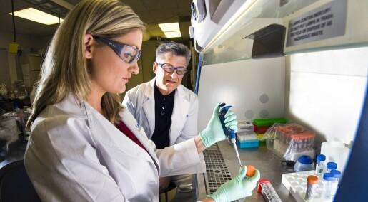Hva skjer når nanomaterialer går i kloakken?
