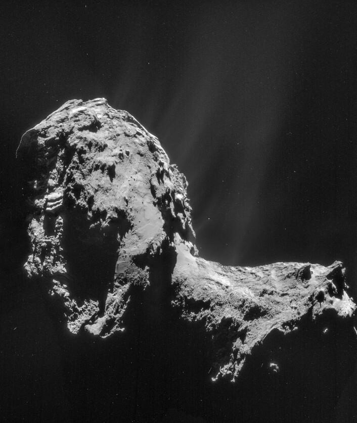 67P den 20. november 2014. Da var Rosetta 30 kilometer fra kjernen. Stråler av støv og gass står ut fra kometen.  (Foto: ESA/Rosetta/NAVCAM)