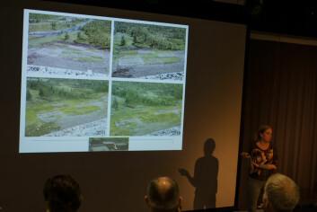 Line Rosef fra NMBU presenterer resultater fra seks års forsøk i Bitdalen i Telemark. Hun anbefaler å ta vare på jorda på stedet før naturinngrep iverksettes, slik at den kan legges tilbake igjen etterpå. (Foto: Anette Tjomsland)