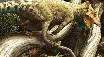Nebbete dinosaur kom til Nord-Amerika tidligere enn antatt