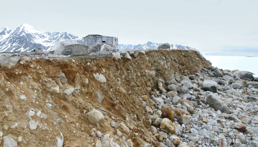Bølgeerosjon skaper problemer for mange av kulturminnene på Svalbard. Denne russiske fangststasjonen på Svenskegattet på NordVest-Spitsbergen har to tufter og et kulturlag med mange gjenstander. Deler av kulturlaget har allerede rast ut. (Foto: Johanne Severinsen)