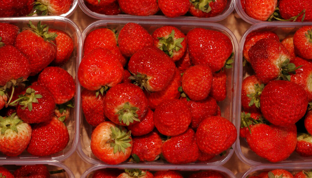 Helse i hvert bær