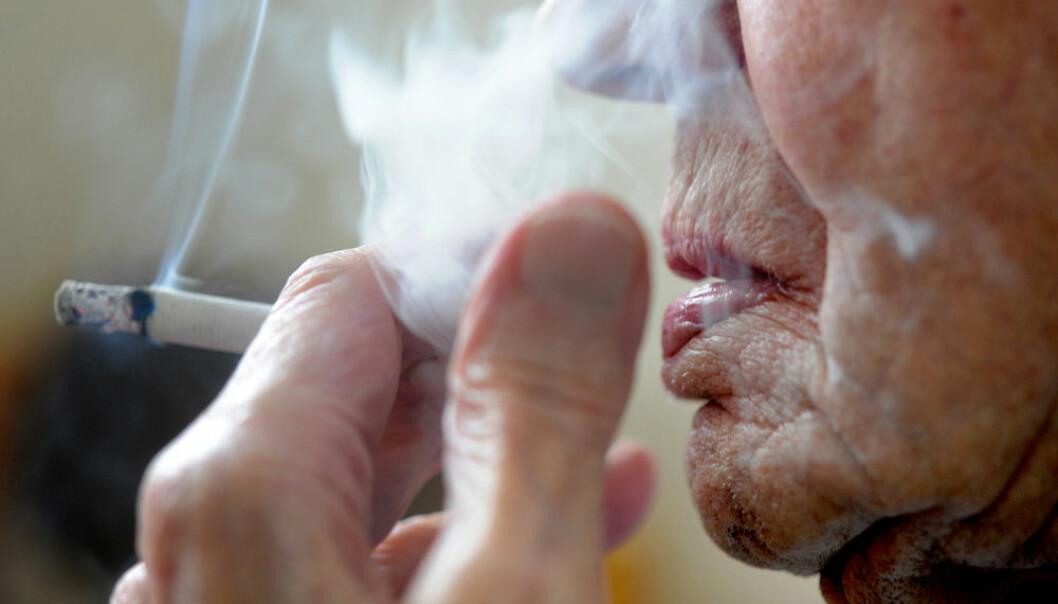 Langsiktige studier av over 3000 svenske menn viser at røyking ødelegger y-kromosomet, den delen av arvestoffet som gjør menn til menn. Ødelagt y-kromosom henger sammen med økt fare for kreft, ikke bare i lungene, viser nye resultater som er publisert i tidsskriftet Science. (Illustrasjonsfoto: Frank May/NTB Scanpix)