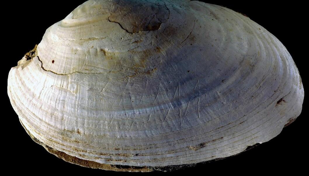 Fant verdens eldste kunst