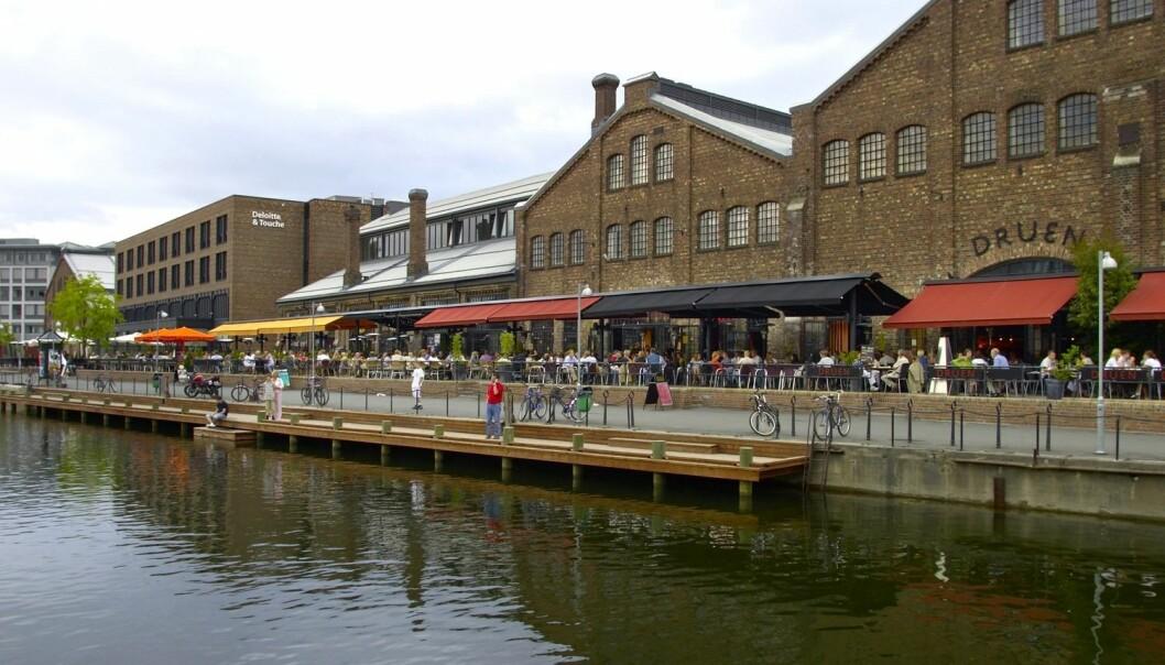 Nedre Elvehavn blir ofte kalt Trondheims Aker Brygge, og er ifølge forskere et godt eksempel på tidligere verkstedsområder som er bygd om til områder med service, handel, boliger, kontorer, kaféer og uterestauranter. Nedre Elvehavn har i løpet av flere år blitt bygd om til et av byens mest populære områder for handel, næring og beboelse, og blir i en fersk NIBR-rapport omtalt som et svært vellykket byutviklingsprosjekt.  (Foto: Tore Wuttudal)