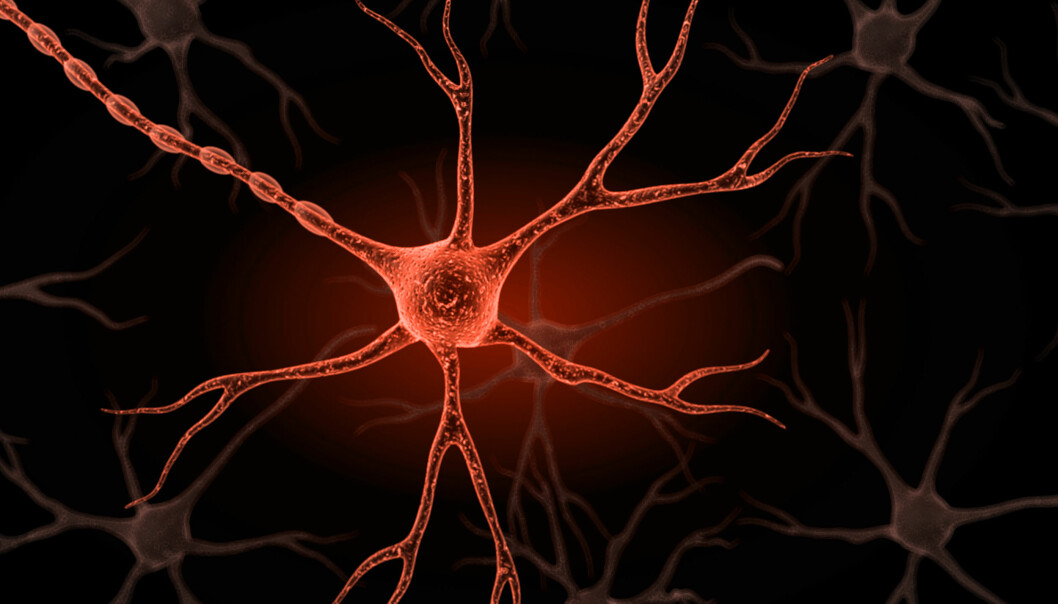 Nervecellene kan kommunisere med hverandre og formidle informasjon i kroppen.  (Illustrasjonsfoto: Colourbox)