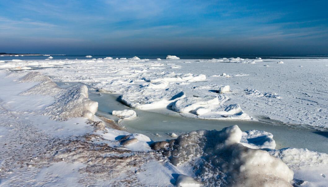 De permanent frosne områdene rundt Arktis er under press fra stigende temperaturer. Når tundraene smelter, vil drivhusgassen metan slippes ut, mens en del CO₂ kanskje tas opp. (Foto: Microstock)