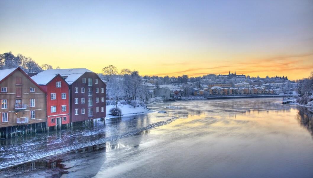 I Trondheim har rektor Gunnar Bovim ved NTNU har fått i oppdrag å utrede muligheten for NTNU-campuser fra Gjøvik i sør til Narvik i nord. (Foto: Tore Wuttudal / NN / Samfoto)