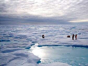 Har funnet gammel grense for havis i Arktis
