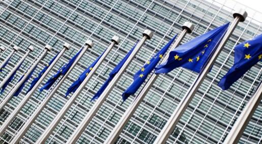 Føderale land vinner i EU