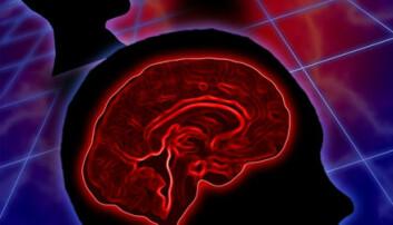 Det nytter å datatrene hjernen