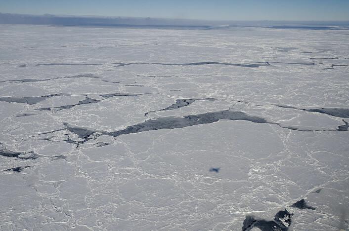 Sjøisen i Bellinghausenhavet i Antarktis. Undersøkelsene ble blant annet gjort i dette havet. (Foto: NASA)