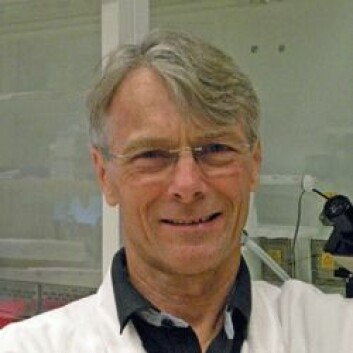 Professor Dag Jenssen vil forske mer på hvordan akrylamid og kreft henger sammen. (Foto: Stockholms universitet)