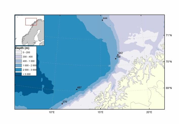 Kartet viser området med de fem undersøkelsesstasjonene som indikerer hvor den nye arten Halirages helgae ble funnet. Alle stasjonene ligger dypere enn 1000 meter.  (Foto: (Kart: Kjell Bakkeplass, Havforskningsinstituttet))