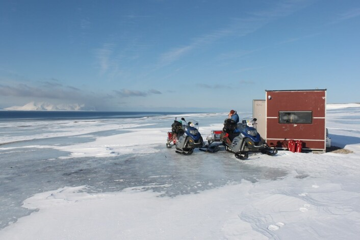 Forskere fra flere ulike fagfelt har fått muligheten til å undersøke konsekvensene av den unike værsituasjonen på Svalbard vinteren 2012.  (Foto: Brage Bremset Hansen)