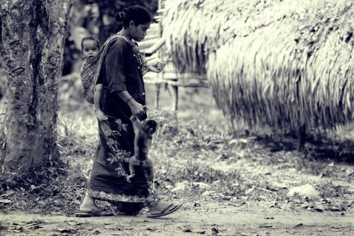 Det at Jahai-folket lever i regnskogen kan være grunnen til at de er så gode til å sette ord på lukter. (Foto: Zaini Abdullah/Flickr)