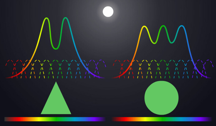 Det hyperspektrale kameraet er følsomt for mange, smale fargeområder (stiplede linjer). Dermed klarer det å avsløre detaljer i fargekurvene som viser at de er forskjellige. (Foto: (Figur: Arnfinn Christensen, forskning.no))