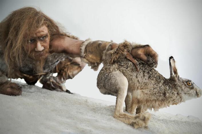 I steinalderen beveget jegeren seg mye. Derfor ga det mening at han spiste mye kjøtt; proteininnholdet er viktig for musklene ved trening. Så hvis du er steinalderfan, bør du sørge for å røre deg mye. (Illustrasjonsfoto: Colourbox)