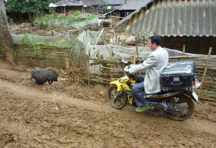 Et hyperspektralt kamera underveis til mineralleting for å finne forekomster av sjeldne jordarter i Vietnam. På ett av målestedene ble oppsettet angrepet av en løpsk vannbøffel med kalv. (Foto: Hallvard Skjerping, NEO)
