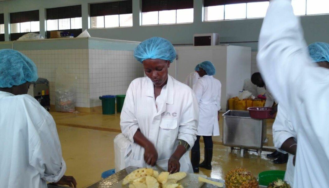 Dette trengs det mer av: Department of Food Science and Technology i Uganda har i dag utstyr og maskiner av samme kvalitet som ved flere forskningsinstitusjoner i Europa. (Foto: Department of Food Science and Technology)