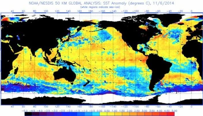 Mye varmt vann i havoverflaten nå. Husk at denne projeksjonen lyver grovt når det gjelder arealet ved ekvator kontra ved polene. (Bilde: NOAA)