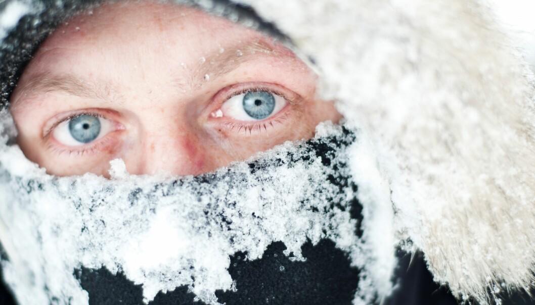 Selv i mange minusgrader holder øyet seg varmt. (Foto: Colourbox)