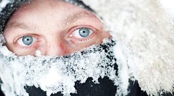 Spør en forsker: Hvorfor fryser ikke øyet?