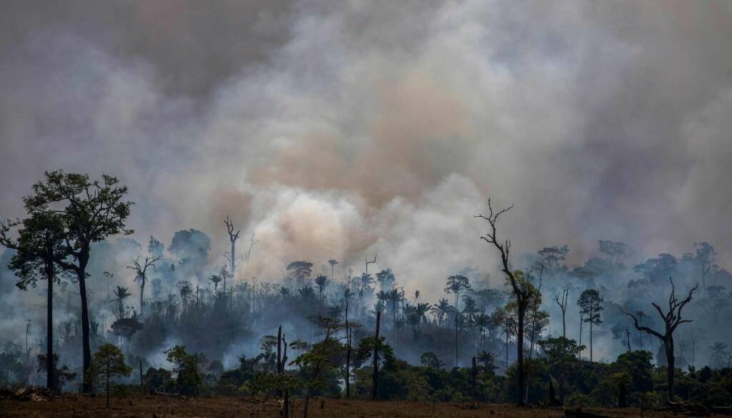 Røyk steg fra skogbranner i Altamira, Pará 27. august. (Foto: Joao Laet / AFP/ NTB Scanpix).